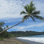 Beyond Blighty Travel Destinations - Drake Bay, Costa Rica