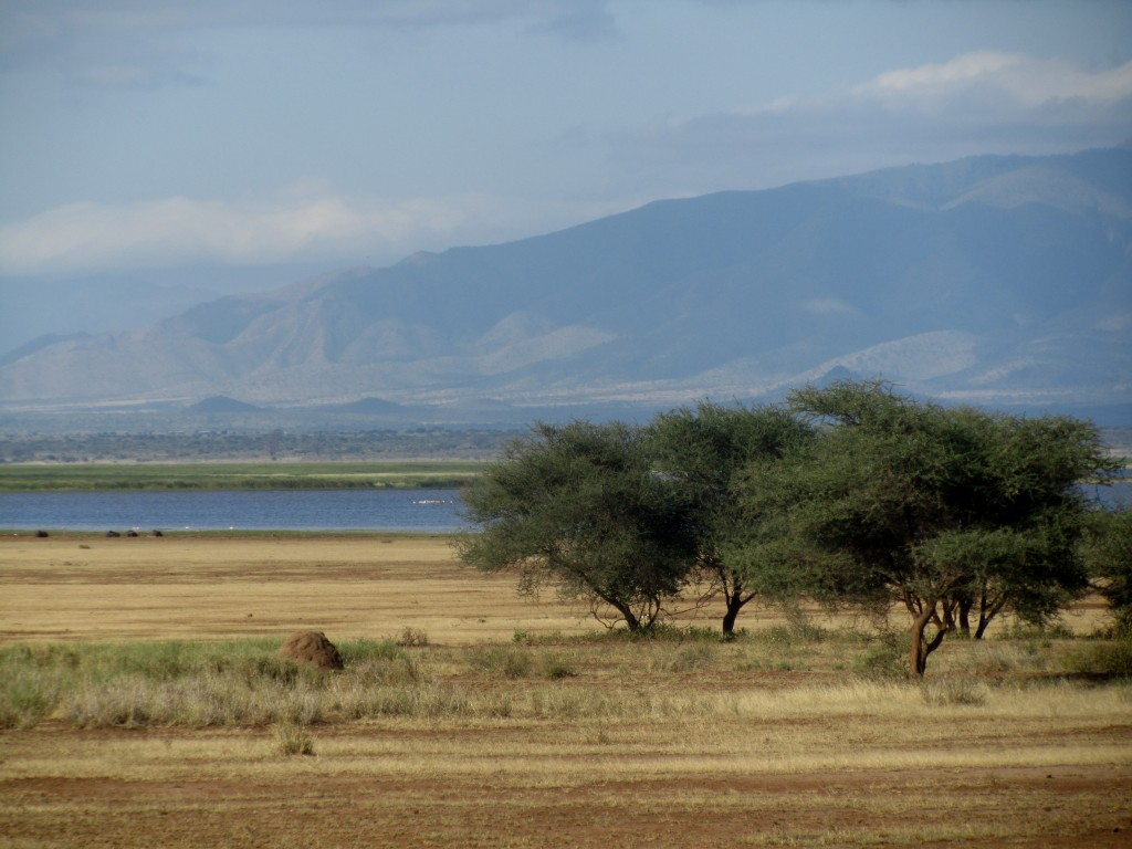 Lake manyara itself