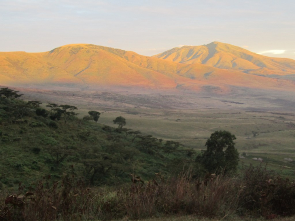 Safari in Ngorongoro Crater - drive into crater