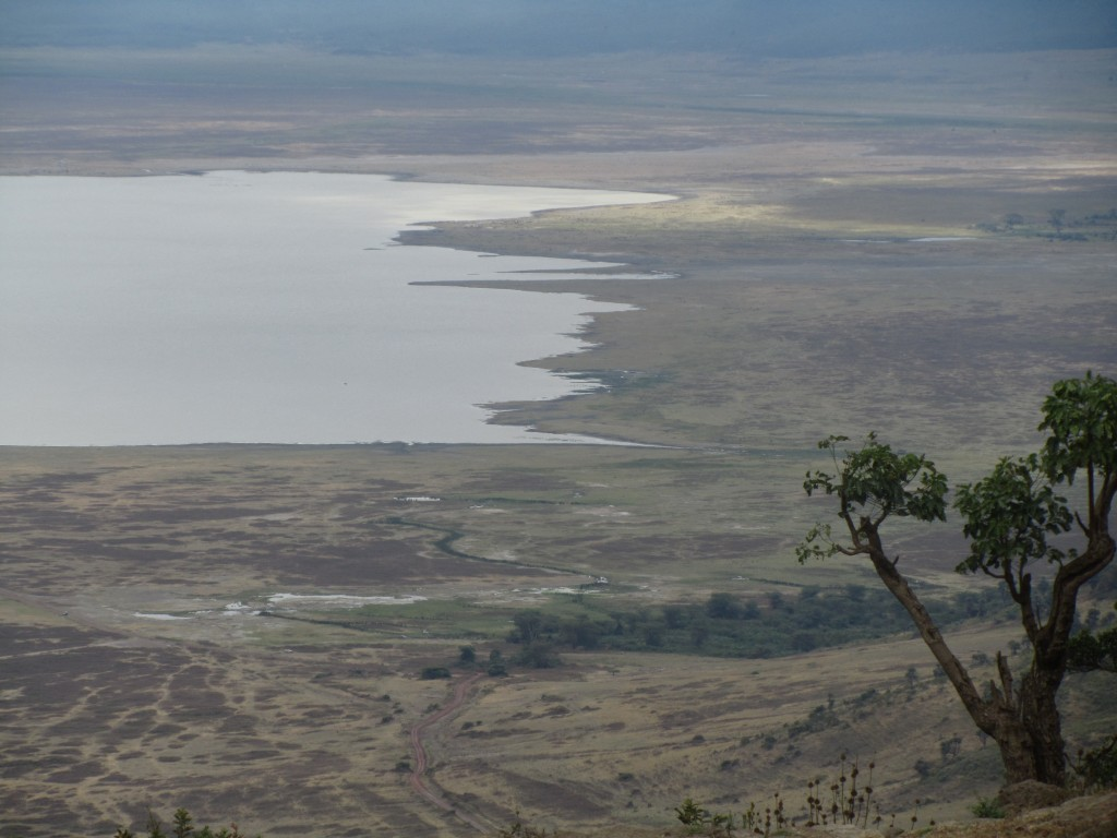 Serengeti crater view