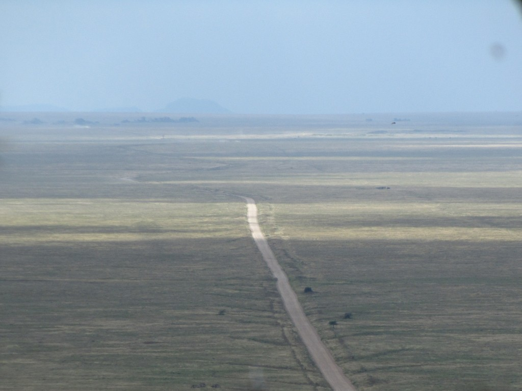 Serengeti wide expanse
