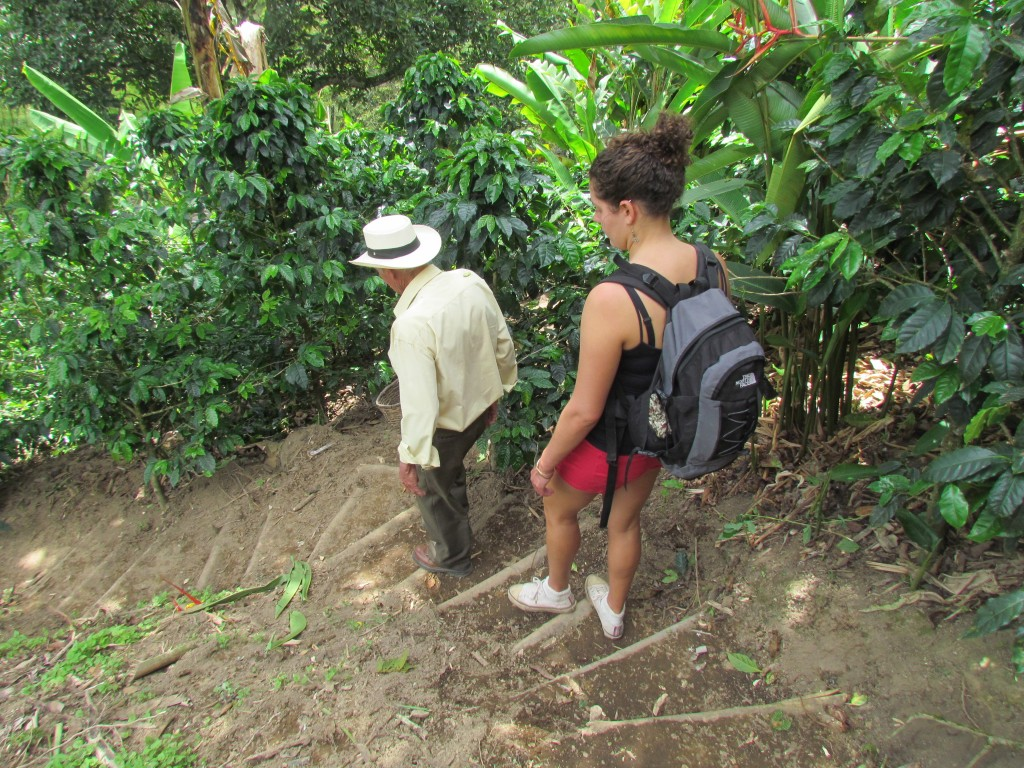 Salento Coffee Making Tour - Elias' farm