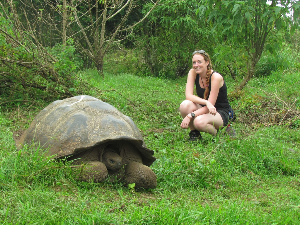 How to plan a gap year - Galapagos