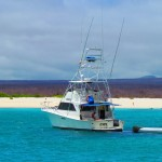 What to Expect from a Galapagos Cruise