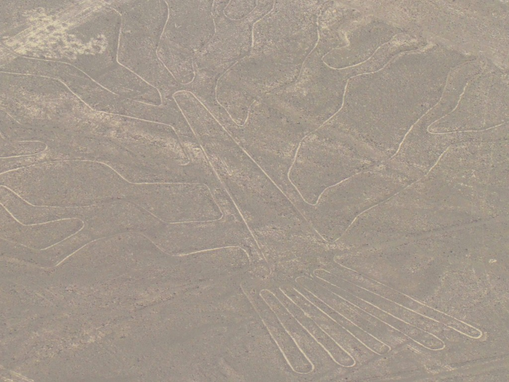 Flying over Nazca -  the 'tree'