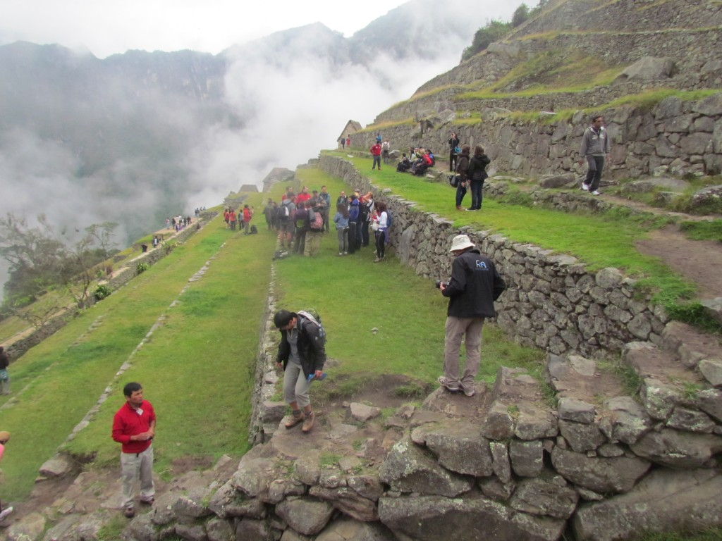 A day in Machu Picchu - terraces