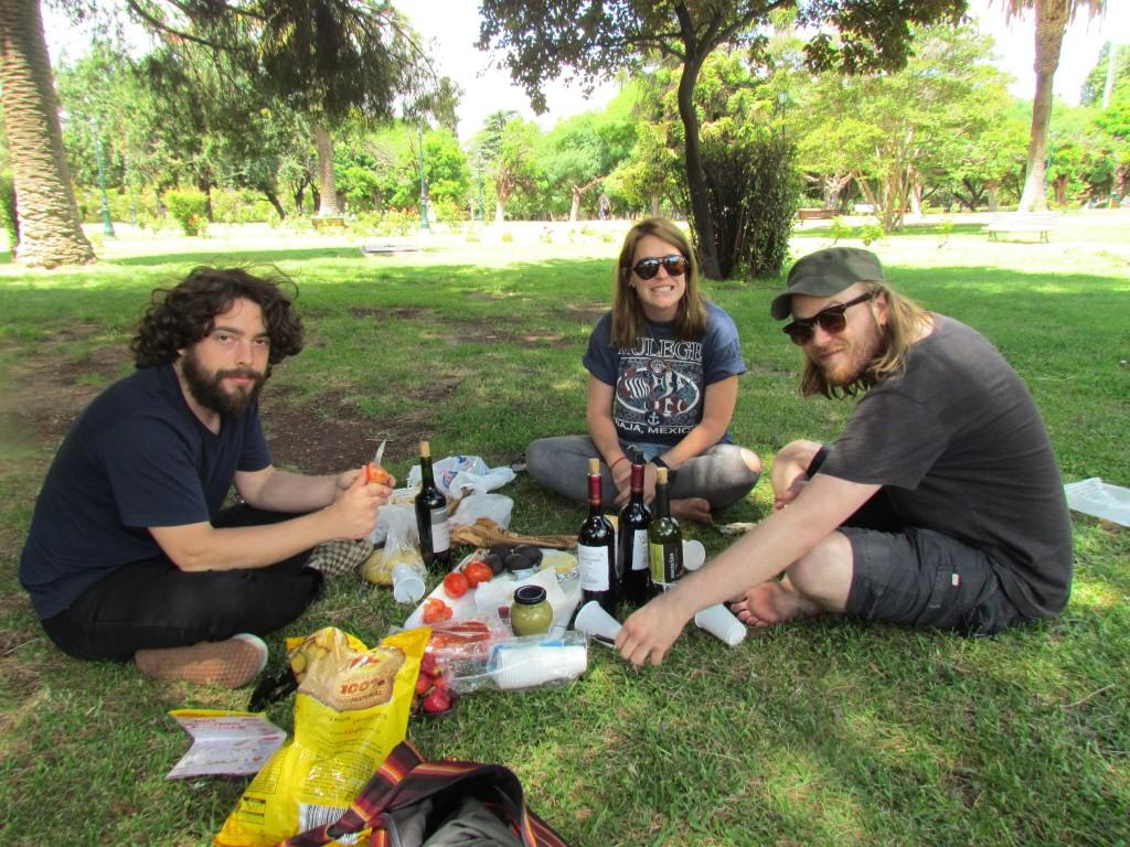 Wine in Mendoza - picnic