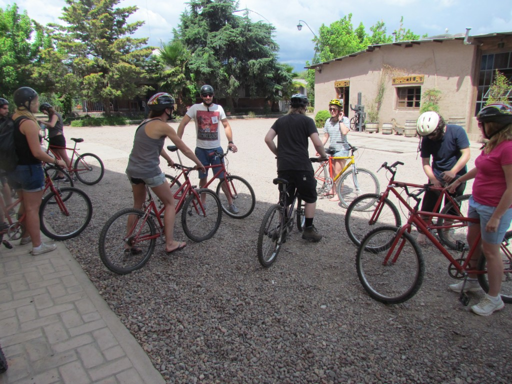 Wine in Mendoza - bikes