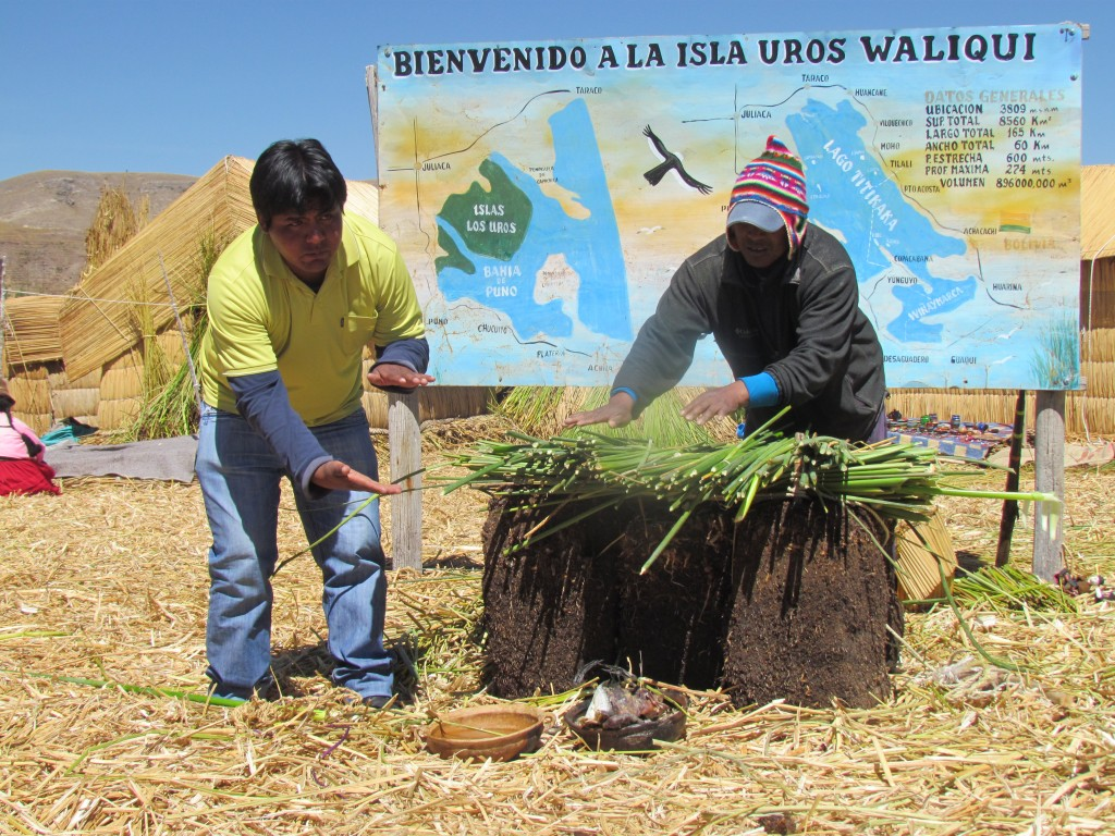 Floating Uros Islands - reed demostration