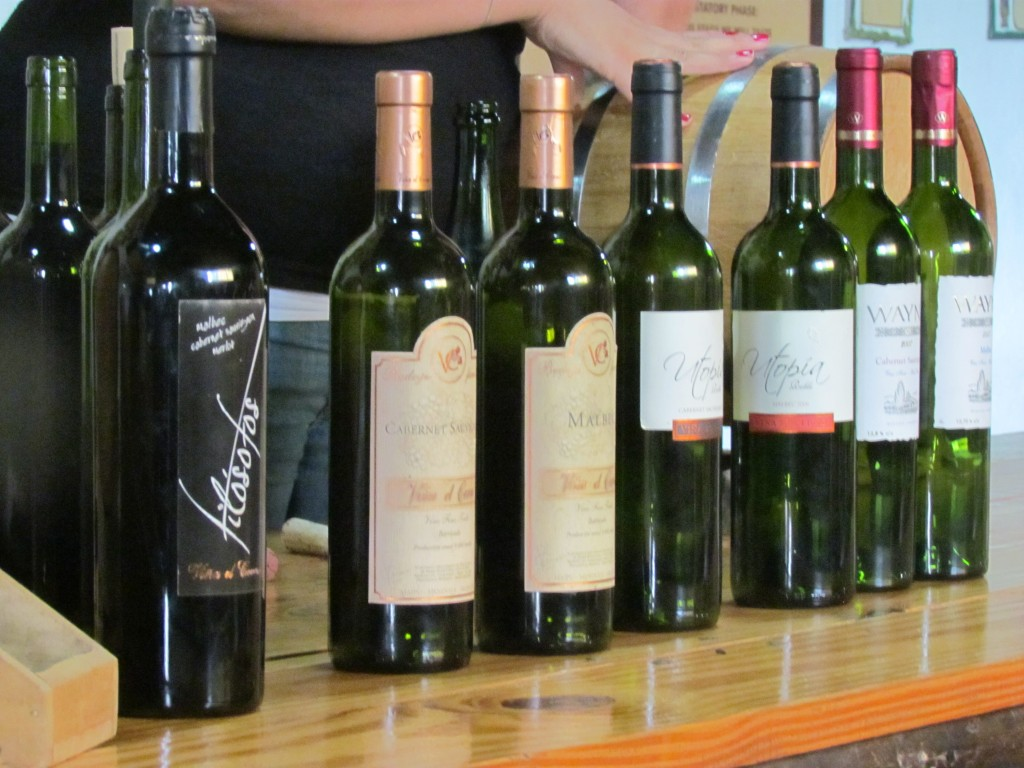 Wine in Mendoza - bottles
