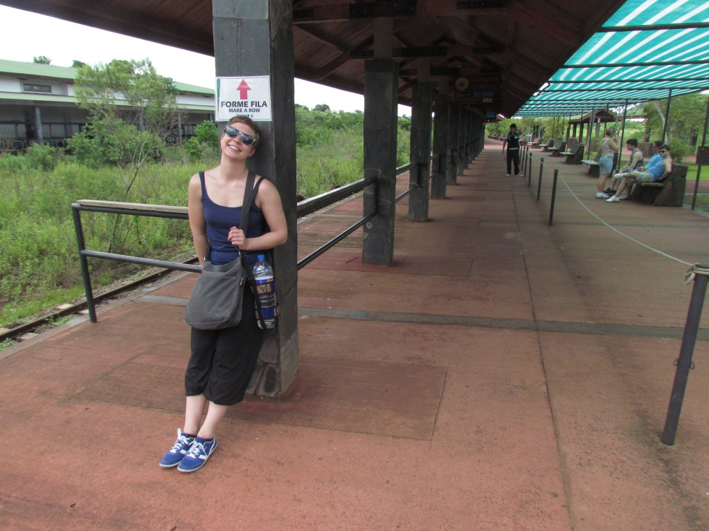 Iguazu Falls at new year - waiting for the train