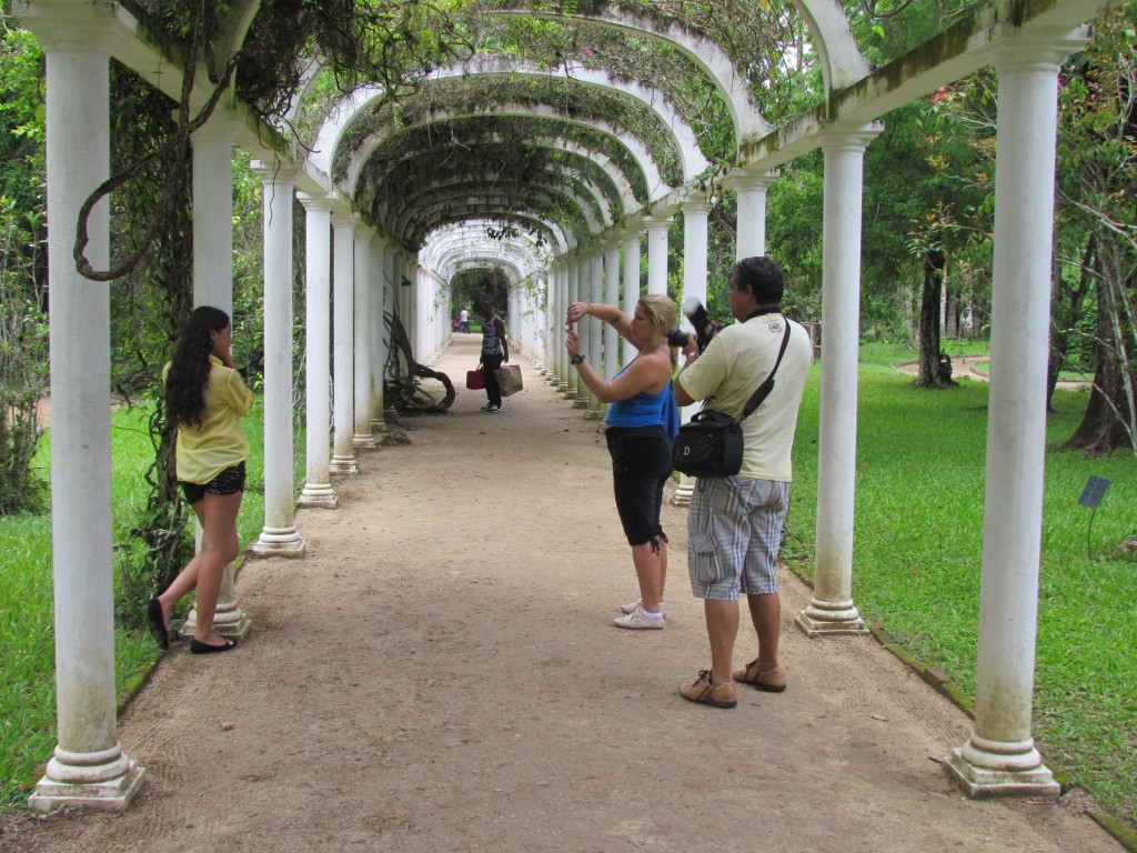 Botanical gardens in Rio - photo shoot