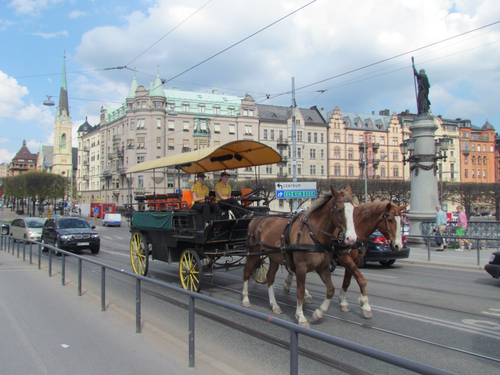 how expensive is stockholm? - Horses