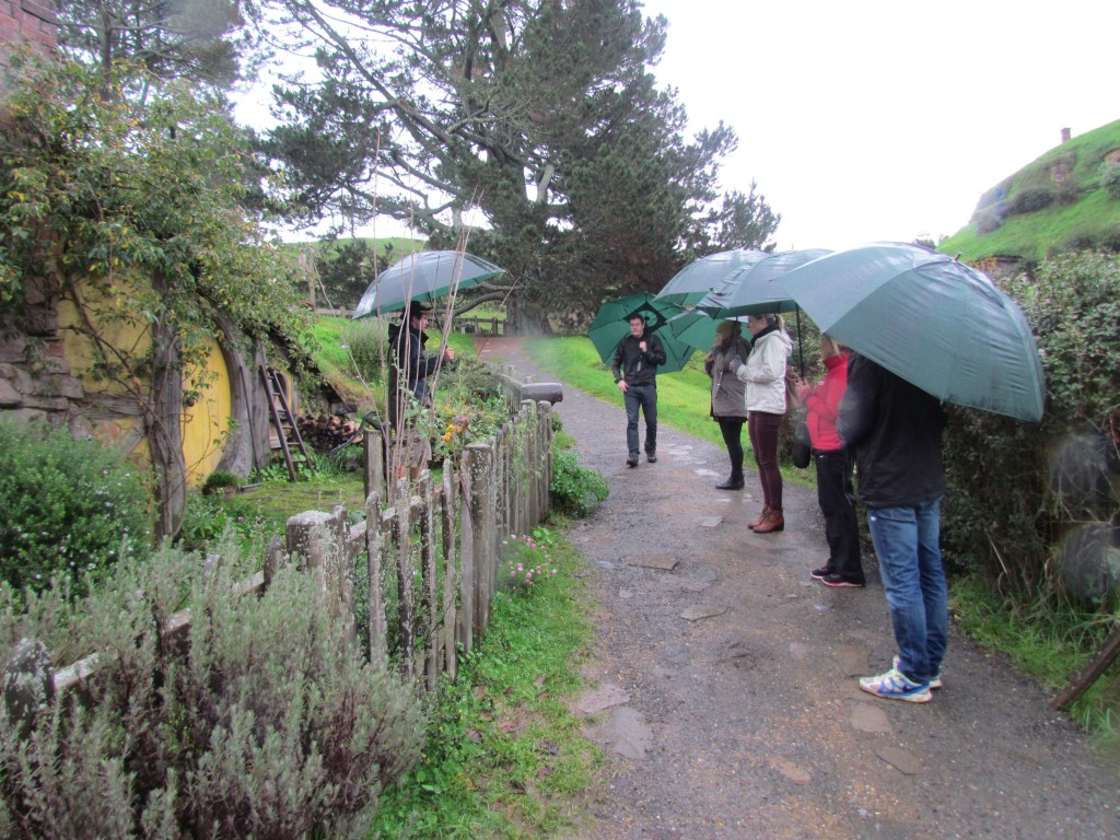 Hobbiton Movie Set Tours - Our group