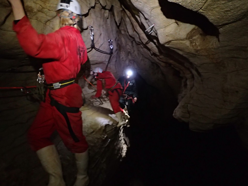 Black Odyssey caving with Legendary Blackwater Rafting Company - Clinging on