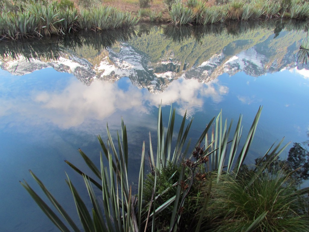 Milford Sound with Real Journeys - Mirror Lakes