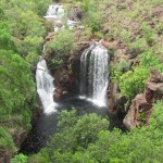 Christmas in Darwin: a Trip to Litchfield National Park