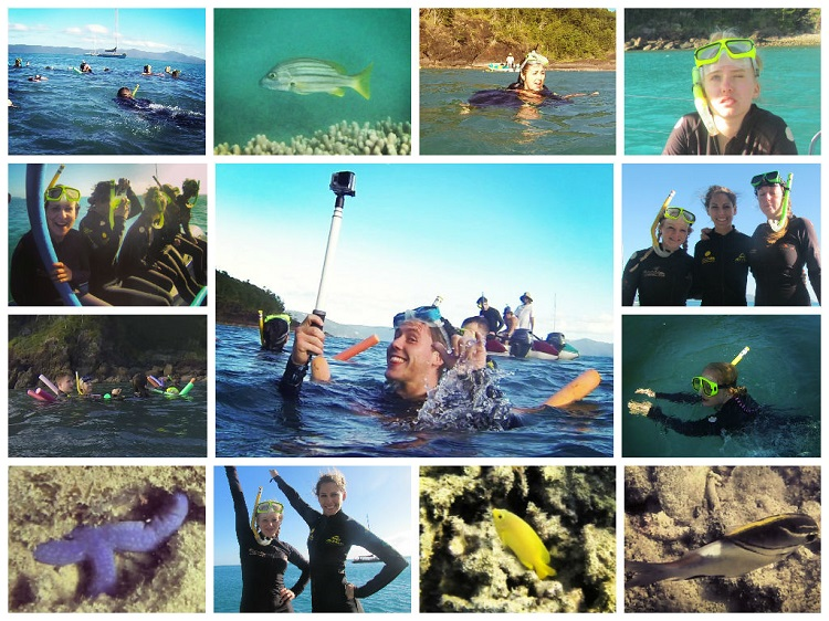 Sailing the Whitsundays - Snorkelling