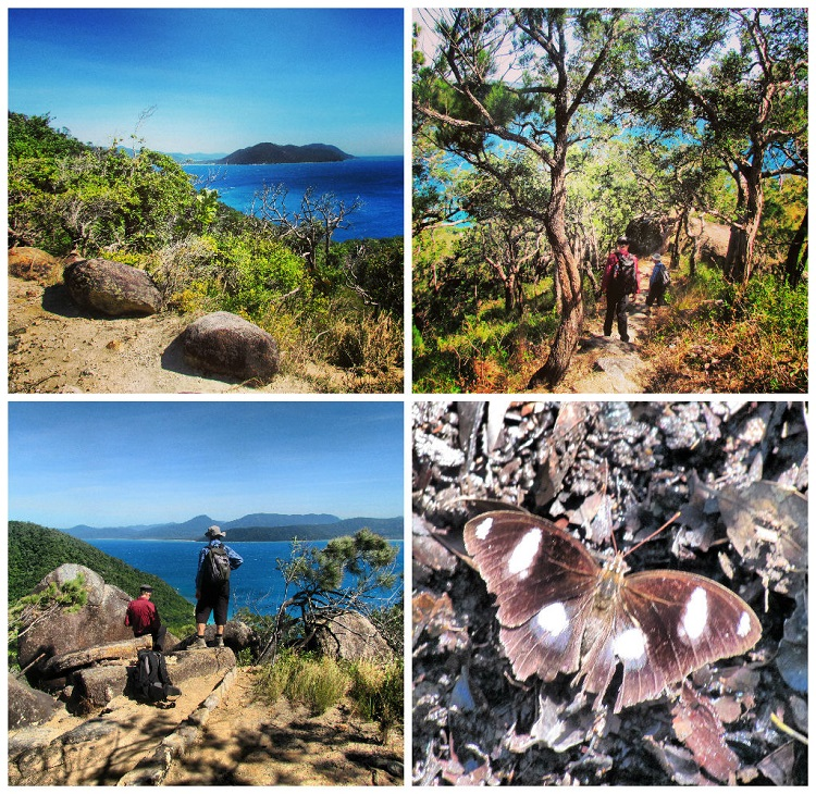 Day Trip to Fitzroy Island with Raging Thunder - Hiking
