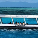 A Great Barrier Reef Cruise with Ocean Freedom