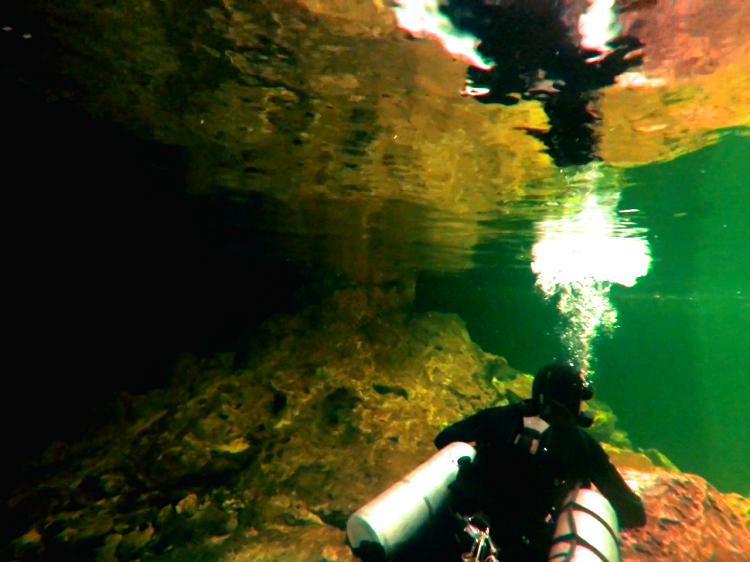 Save the Cenotes - Diving Reflection