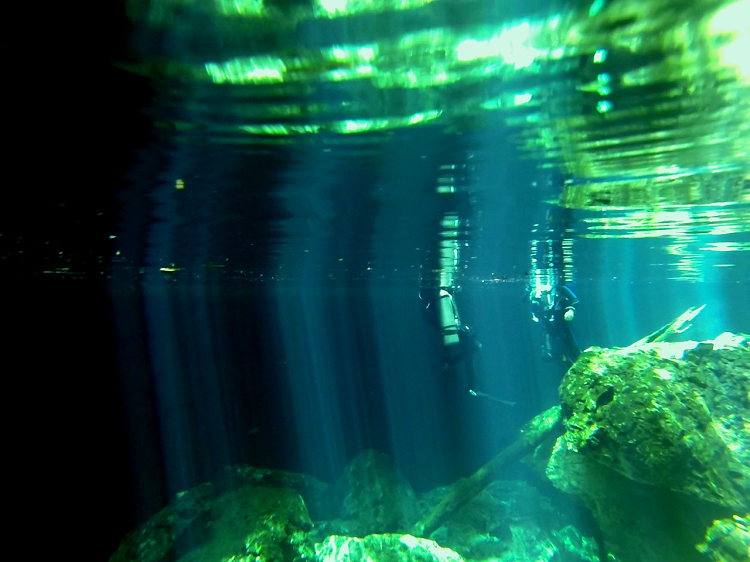 Cenote Diving in Mexico - Diving The Pit and the Taj Mahal - reflections