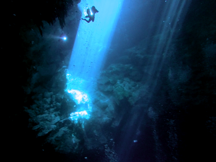 Cenote Diving in Mexico - Diving The Pit and the Taj Mahal - beam me up