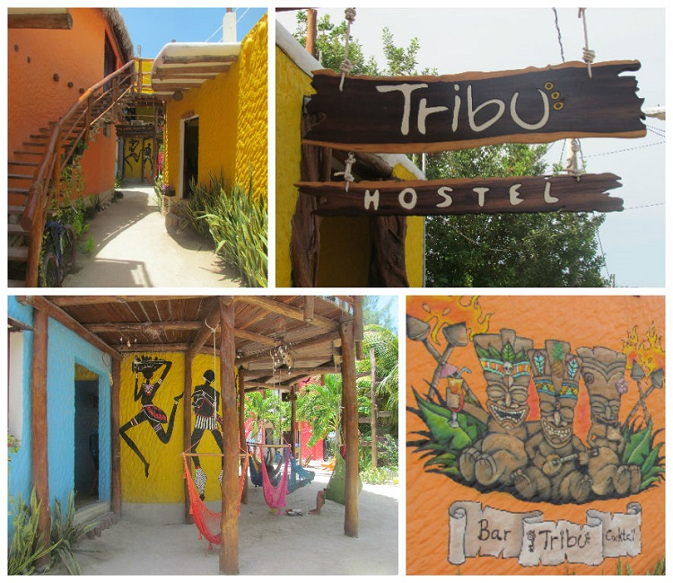 Isla Mujeres or Holbox - Tribu Hostel