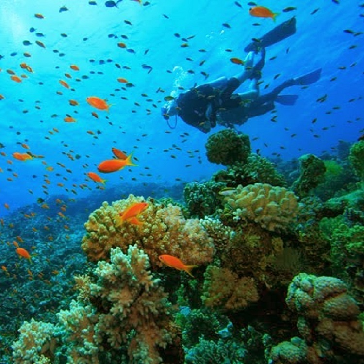 Best Dive Sites in Central America and Mexico - Corn Islands