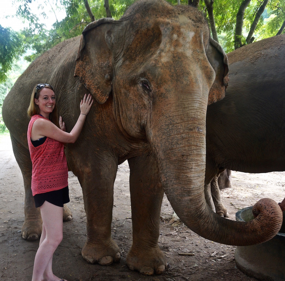 Visiting Chiang Mai - Elephant Nature Park