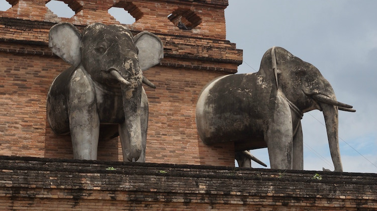 Visiting Chiang Mai - Elephants on Temple