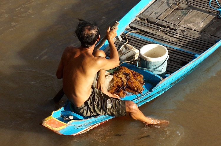 Floating Villages on Tonle Sap Lake - Fisherman