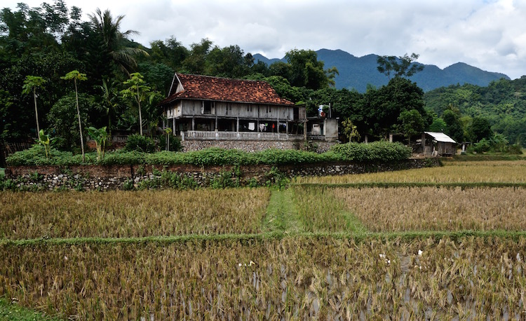 Mai Chau Valley - Homestay
