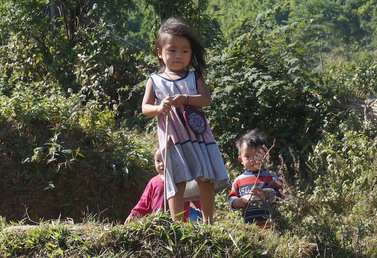 Sapa Trek and Homestay With Vietnam Backpacker Hostels - Local Kids