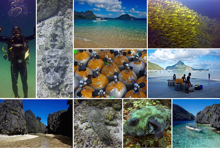 Dive Sites in the Philippines - Scuba Diving in El Nido