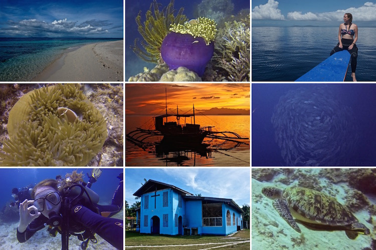 Dive Sites in the Philippines - Scuba Diving in Panglao