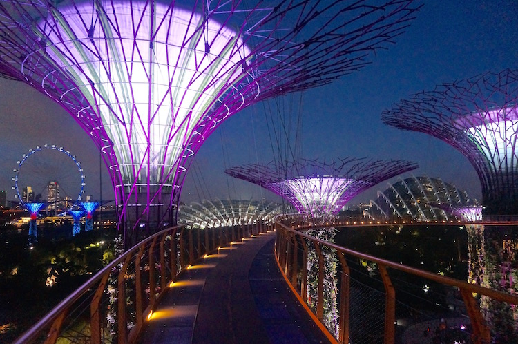 Gardens by the Bay - Skywalk
