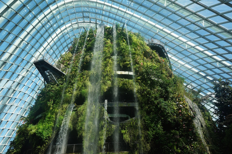 Top Attractions in Singapore - Gardens by the Bay