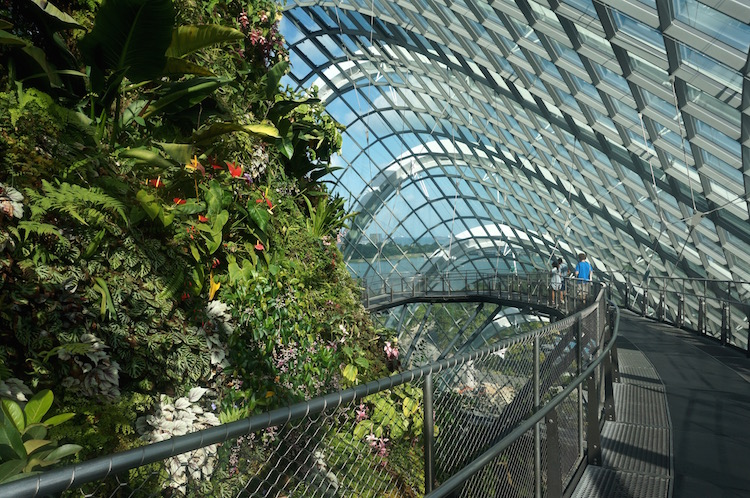Gardens by the Bay - Conservatory