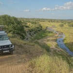 Your Ultimate Guide: Safari in Tarangire National Park