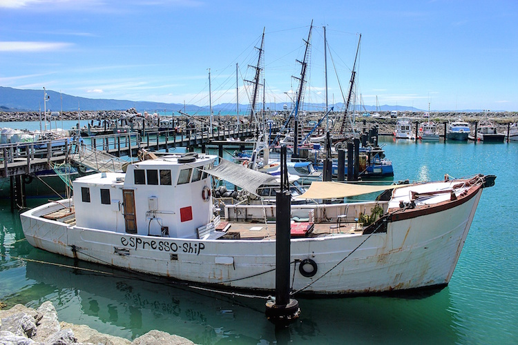 Top of the South Island - Espresso Ship - Jacques Cousteau