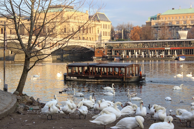 Prague City Break - Boat Tours