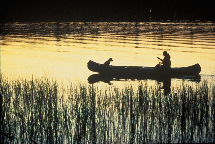 A person and their dog in a canoe at sunset